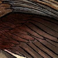 Marchosias-Detail02